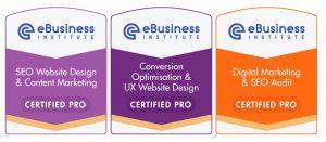 ebusiness institute advanced digital marketing certifications