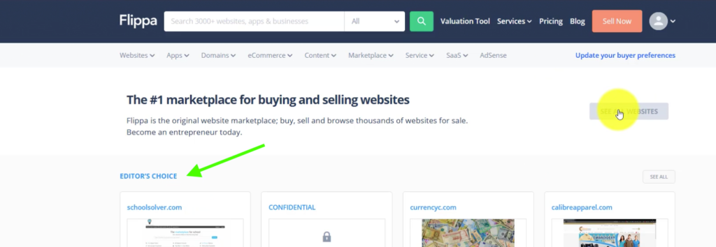 Searching for Websites for Sale on Flippa
